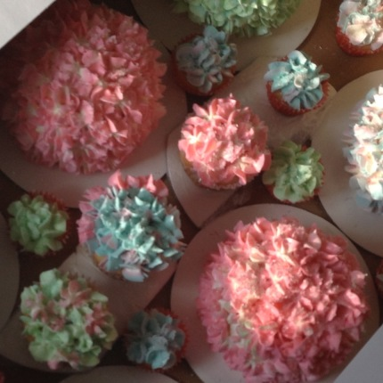 Hydrangea Cakes